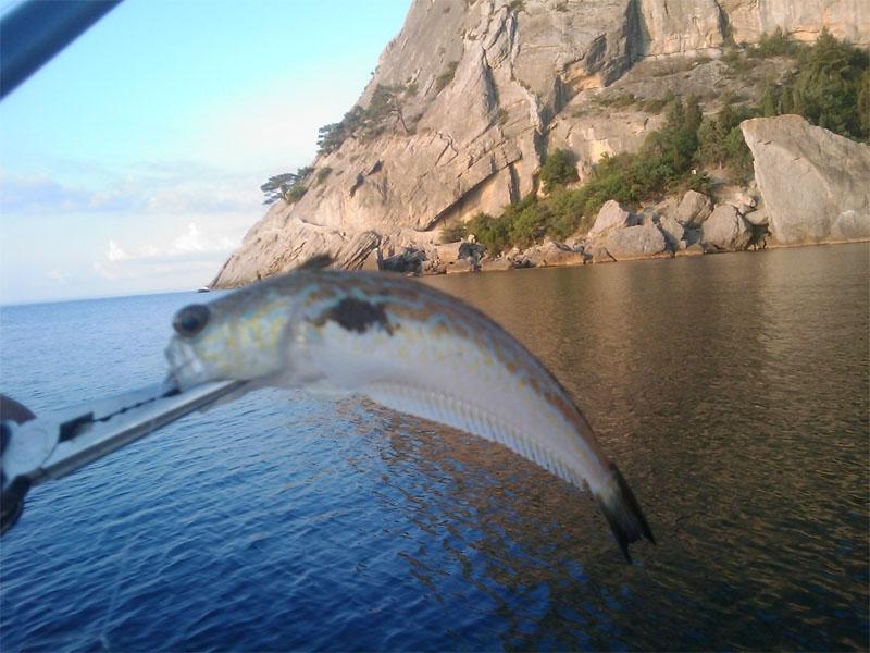 рыбалка на черном море места