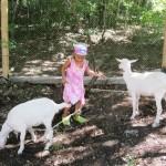 Парк «Маленькая ферма»